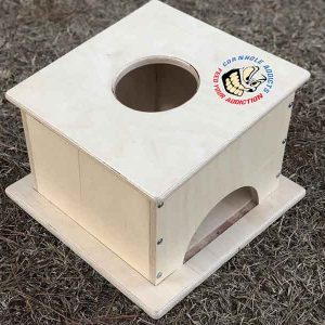 Cornhole Addicts Pro Airmail box