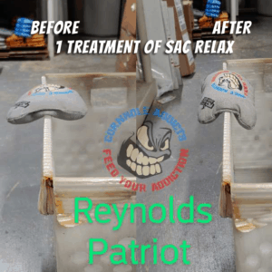 Relaxed patriot bags before and after